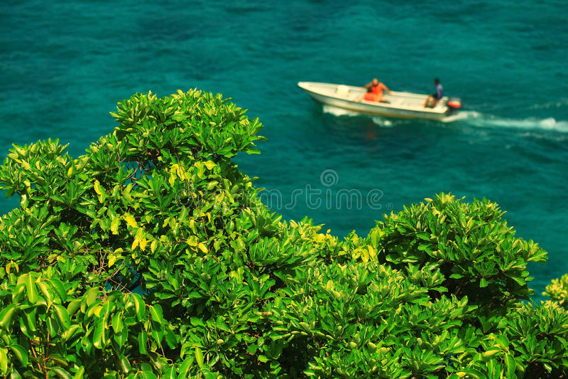 sea bay with a motorboat royalty free stock photos