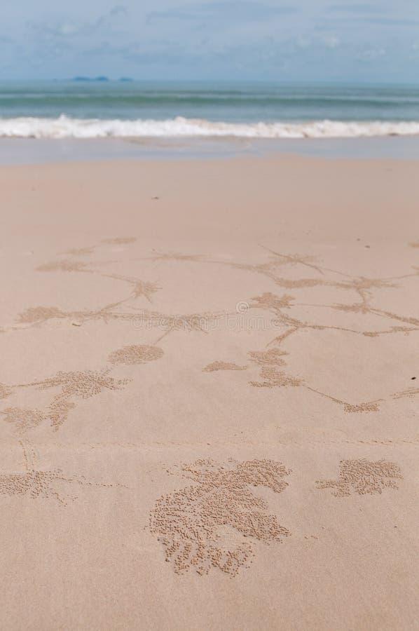 Sea & beach royalty free stock photography