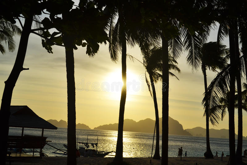 Sea, beach, waves, palm grove illuminated sunlight through the clouds at sunset. El Nido Palawan Philippines stock images