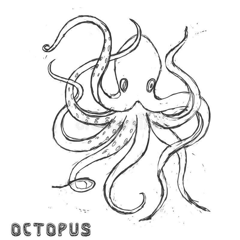 Sea beast character illustration drawing geometric cute animal polar ocean face octopus eyes funny sea life color white and black stock illustration