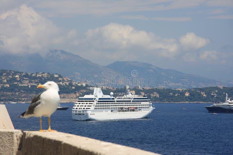 Download Sea beautys stock image. Image of panorama, oceana, palate - 10945699