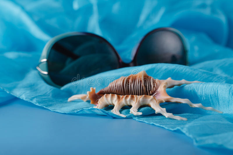 Sea blue silk background with shells. stock photo