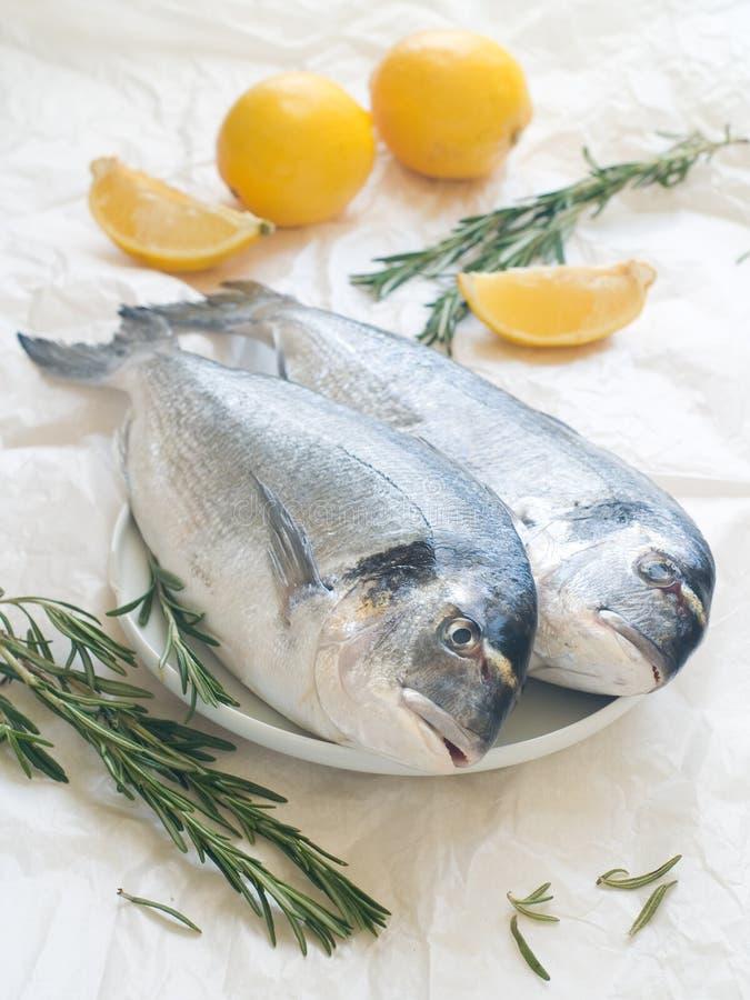 Sea bream. Fresh sea bream with lemon and rosemary, selective focus stock photo
