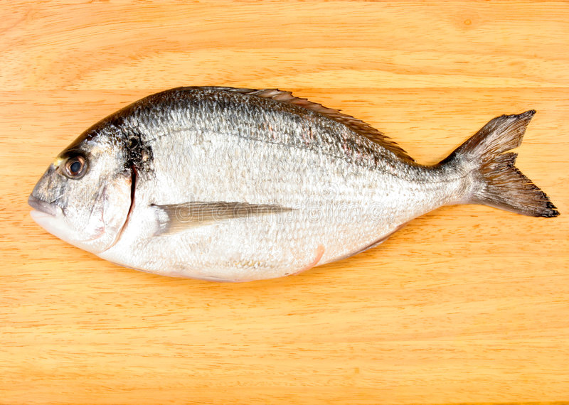 Sea Bream. Fish on a wooden board stock photography