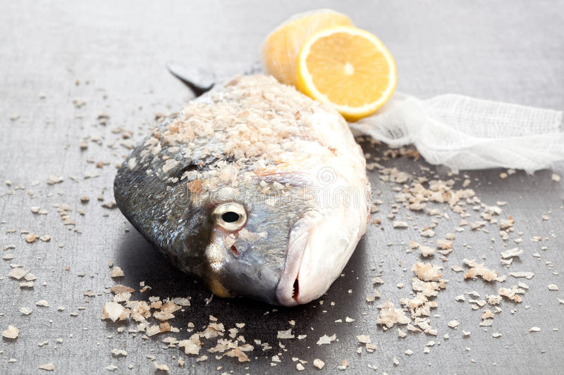 Sea bream. Delicious seafood. Fresh gilt head bream with sea salt crystals and lemon on shiny silver background. Luxurious seafood concept stock photography