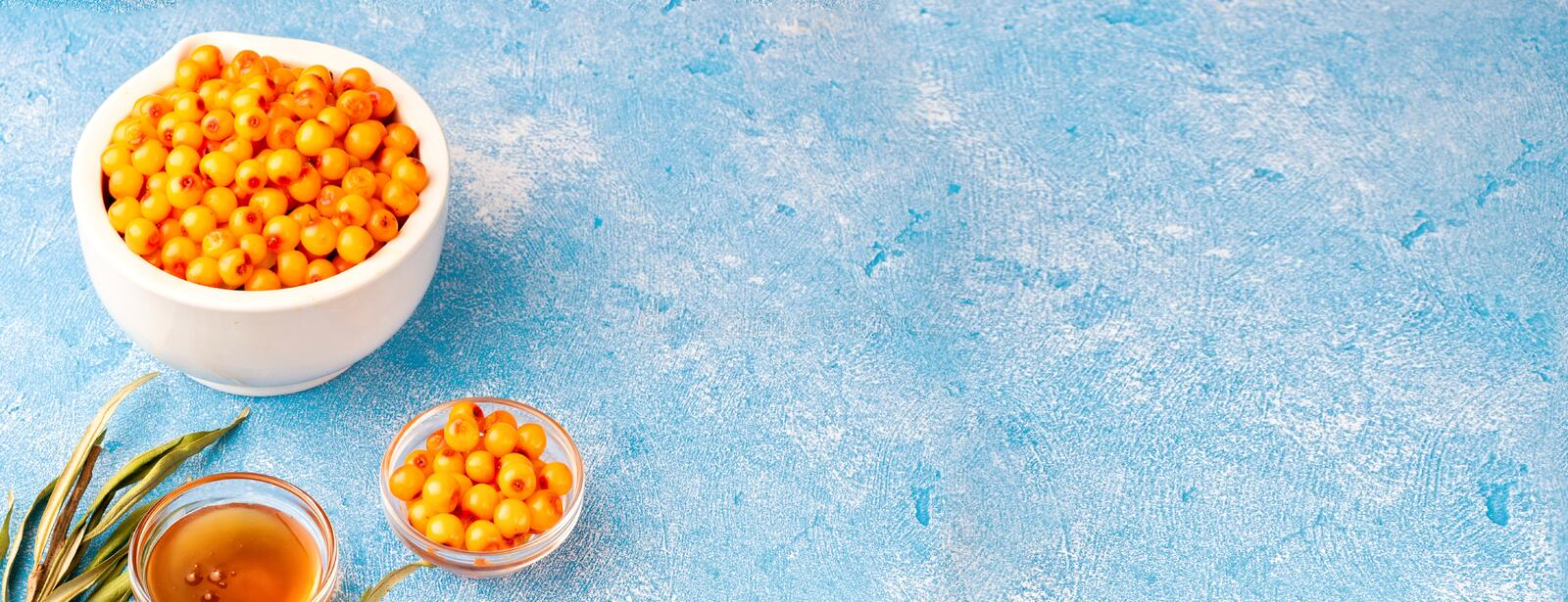 Sea-buckthorn berries in bowl and natural honey or sea buckthorn oil on blue background. Concept of agriculture harvest healthy diet alternative medicine royalty free stock images