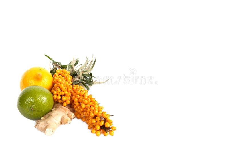 Sea-buckthorn,lemons and ginger. stock image