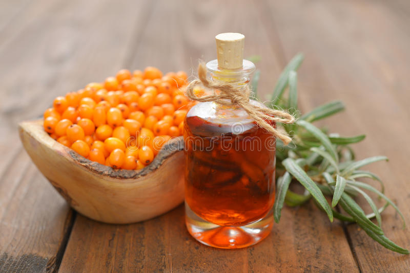Sea-buckthorn oil. And berries in bowl on a wooden background stock photography