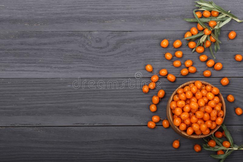 Sea buckthorn. Ripe fresh berries in bowl on black wooden background with copy space for your text. Top view.  royalty free stock photos