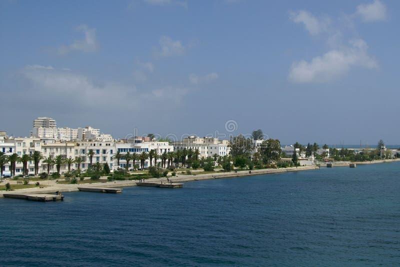 Download Sea coast stock image. Image of shore, beach, palm, bizerta - 12982027
