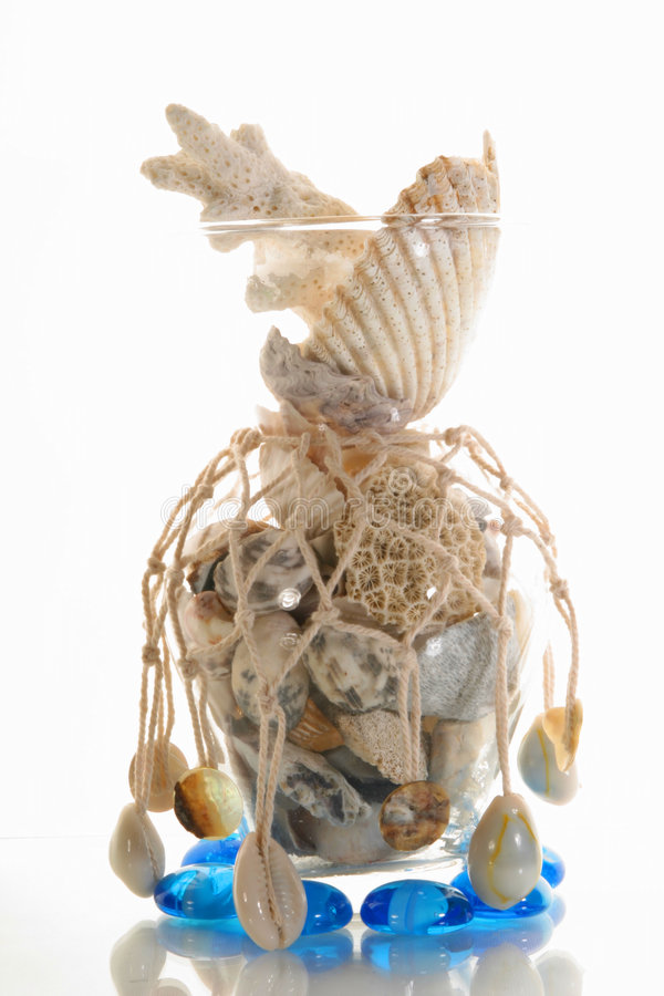 Sea cockleshells and stones. In a vase with a grid royalty free stock photos