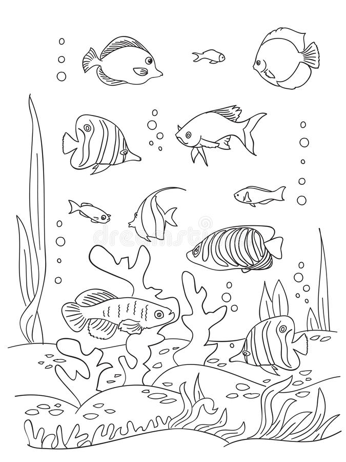Download Sea Coloring Book Page Stock Vector Illustration Of Animal