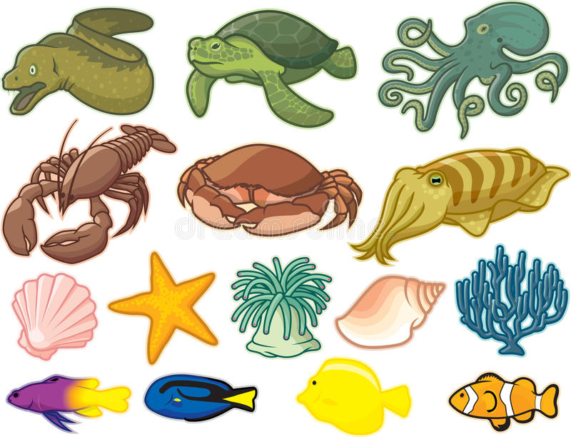 Sea Creatures. Illustration of creatures found in the sea royalty free illustration