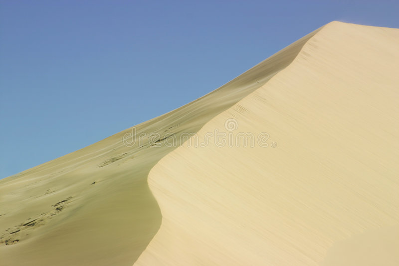 Sea Dune 1 royalty free stock photography
