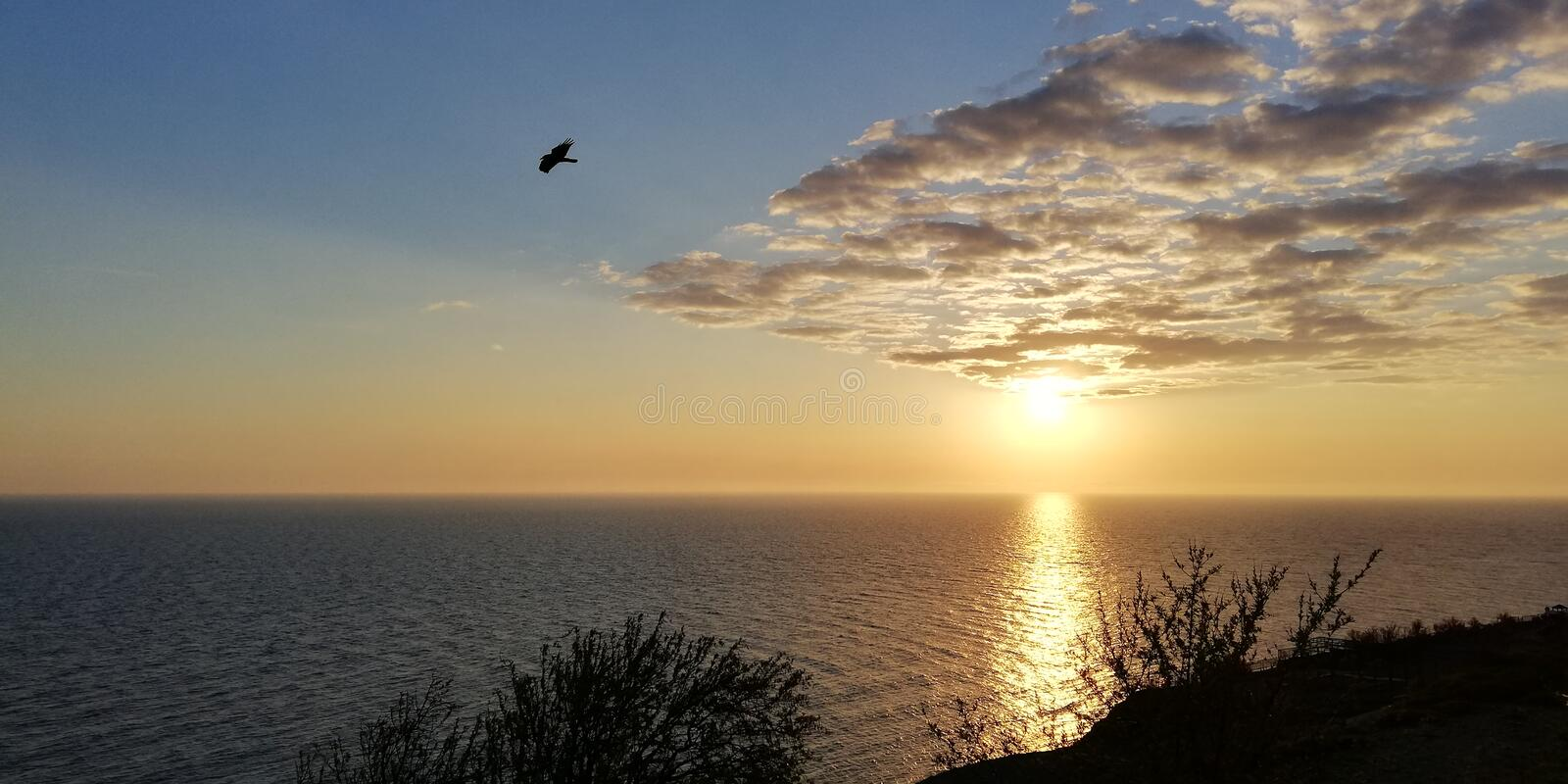 Sea evening sunset landscape. Unusual white clouds reaching the wedge. Ahead is the silhouette of a flying bird. Background stock images