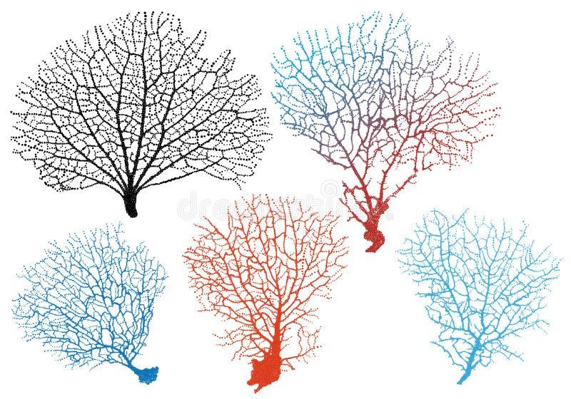 Sea fan corals, vector set stock illustration
