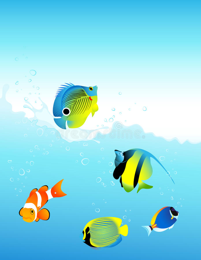 Download Sea fish stock vector. Illustration of phial, nature - 10841109