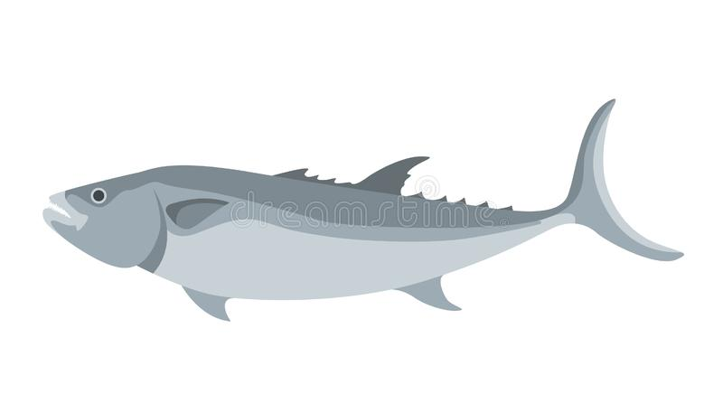 Sea fish, vector illustration ,profile view vector illustration
