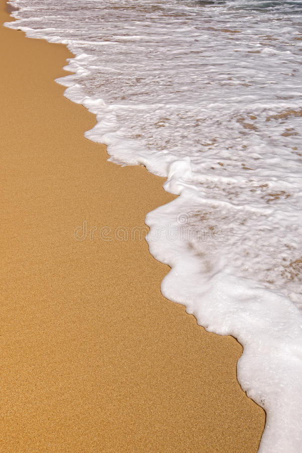 Free Sea Foam On Sand Royalty Free Stock Photography - 22633727
