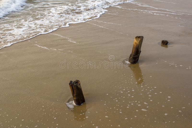 Sea foamy waves near the wooden pillars of the old ruined embankment protrude from the yellow sand royalty free stock photo
