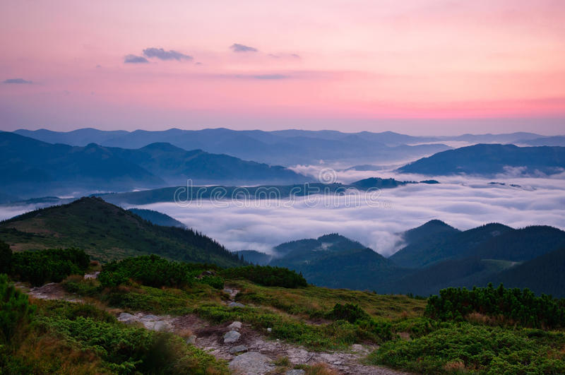 Download Sea of fog stock image. Image of nature, forest, holiday - 34195405