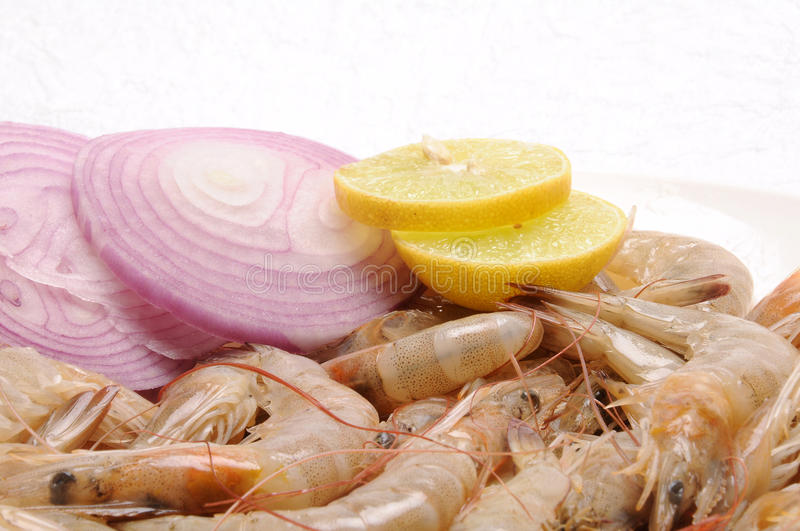 Sea food. Raw sea food ready to cooking royalty free stock image