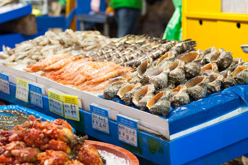 Sea food at fish market, Seoul royalty free stock photography