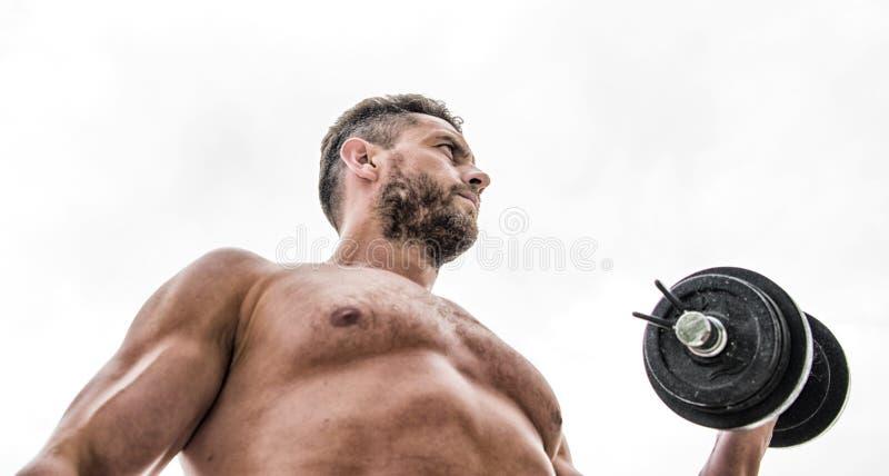 Sea fuerte Equipo de deporte Seis paquetes perfecto dieta de la salud de la aptitud deportista del hombre con el torso fuerte del fotografía de archivo libre de regalías