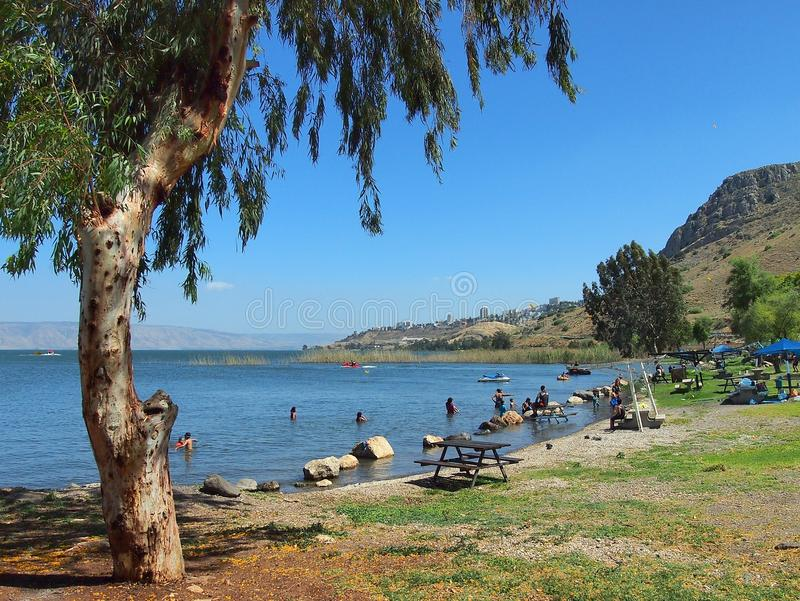 Download Sea of Galilee editorial stock photo. Image of swimming - 44069888