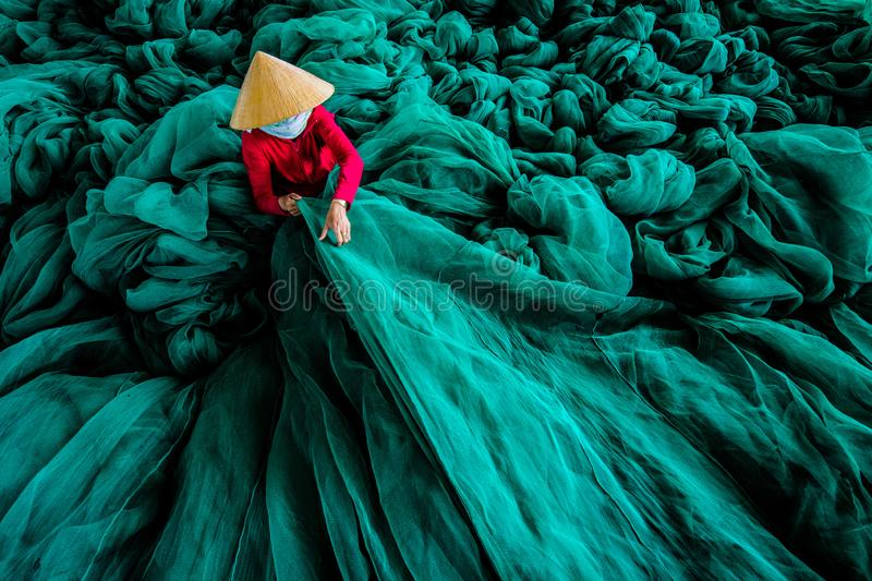 The Sea of Green royalty free stock photo