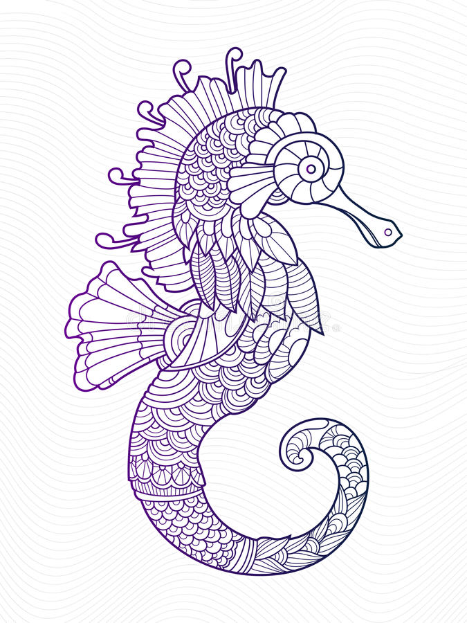 Sea horse coloring book for adults stock illustration