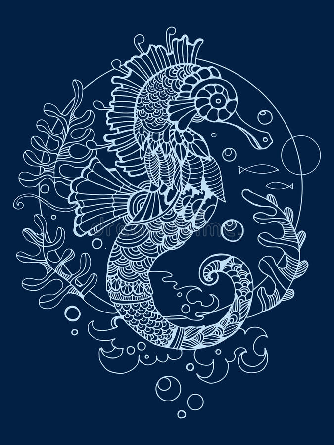 Sea horse coloring book for adults vector stock illustration