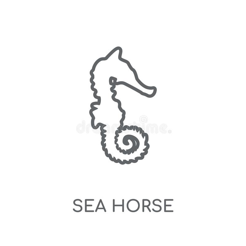 Sea Horse linear icon. Modern outline Sea Horse logo concept on. White background from animals collection. Suitable for use on web apps, mobile apps and print royalty free illustration