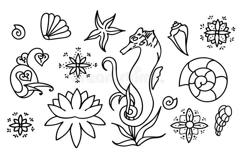 Sea horse, shells and doodle elements. Graphic sea life stock illustration