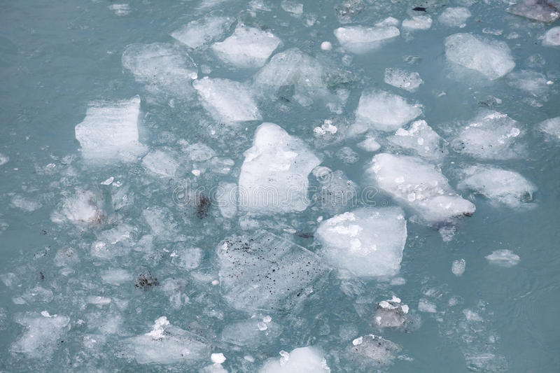 Sea ice. Float on the water stock image