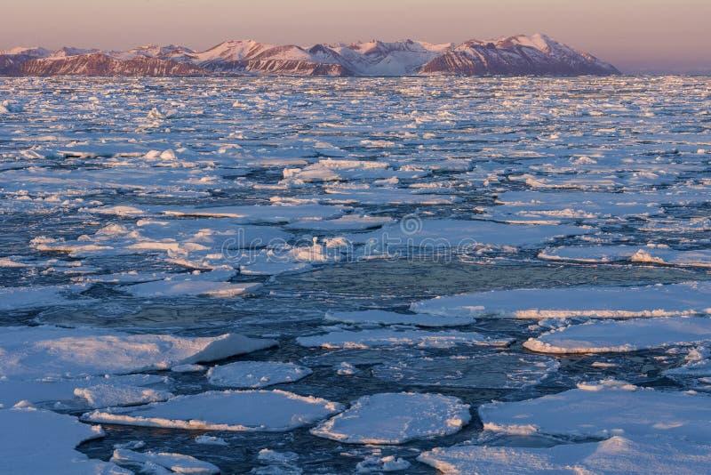Sea Ice - Greenland. Sea ice off the coast of eastern Greenland stock photos