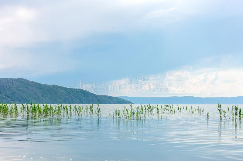 Sea landscape with mountines and canes, blue sky with clouds, cloudly without sun, kazakhstan. Sea landscape with mountines and canes, blue sky with clouds stock images