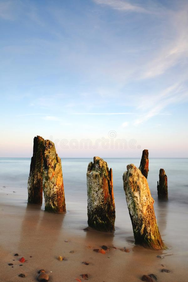 Sea landscape during sunrise, Baltic coast, Kolobrzeg, Poland. Breakwaters on the coast of the Baltic Sea in the rays of the rising sun royalty free stock image