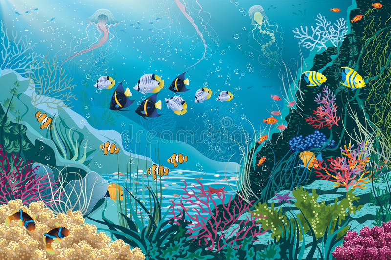 Sea life. Underwater landscape with various water plants and swimming tropical fishes. Vector illustration