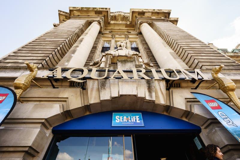 Sea Life Aquarium, London royalty free stock photos