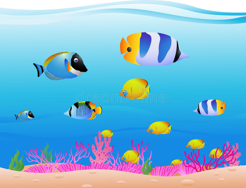 Download Sea Life background stock vector. Image of orange, color - 28772553