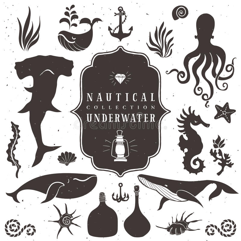 Sea life, marine animals. Vintage hand drawn elements. In nautical style.Vol.2 Vector illustrations on white background stock illustration