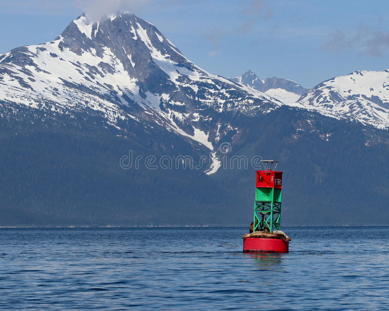 Sea Lions on a buoy in Mountain landscape stock image