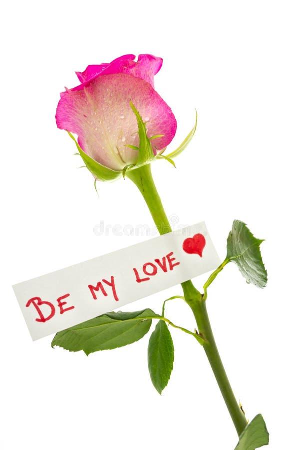 Sea mi amor imagen de archivo libre de regalías