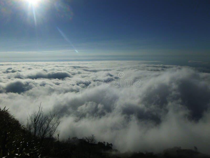 Sea of Mist at Pu Tab Buek,Thailand royalty free stock photography