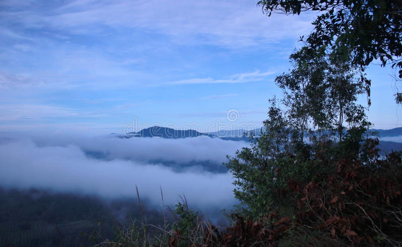 Sea of mist. Mist of water droplets or ice crystals small. The moist air temperatures drop. The water vapor in the air condenses initially as a mist. Adding stock image