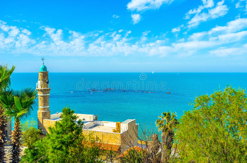 The Sea Mosque of Jaffa. The minaret of Al-Bahr Mosque through the greenery of HaMidron garden in old Jaffa, Tel Aviv, Israel royalty free stock images