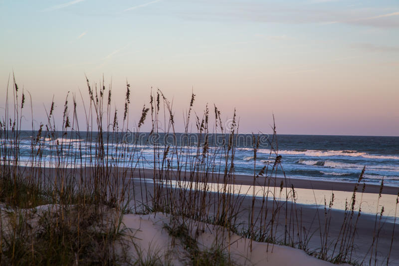 Sea Oats at Fernandina Beach. Amelia Island pier in Fernandina Beach, Florida stock photos