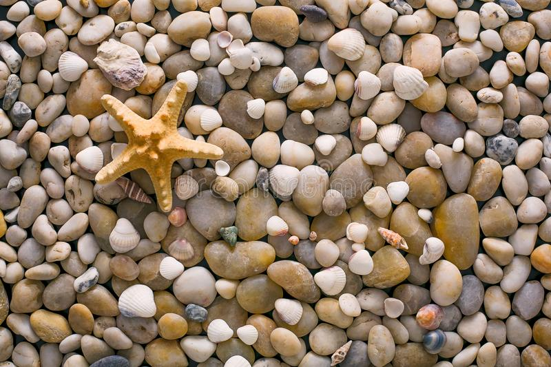 Sea pebbles and seashells background, natural seashore stones and starfish royalty free stock images