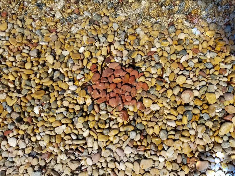 Sea pebbles texture. Round made of red stones in centre royalty free stock photo
